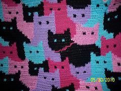 Cats Afghan
