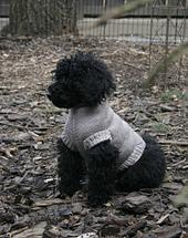Perfect Fit Dog & Cat Sweater (Pattern Generator, Top-Down)