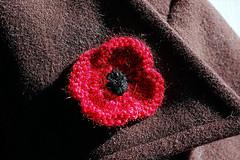 A Poppy for Remembrance
